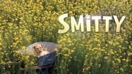 smitty-2